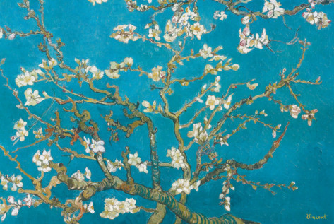 Almond Branches in Bloom, San Remy - Vincent Van Gogh Paintings