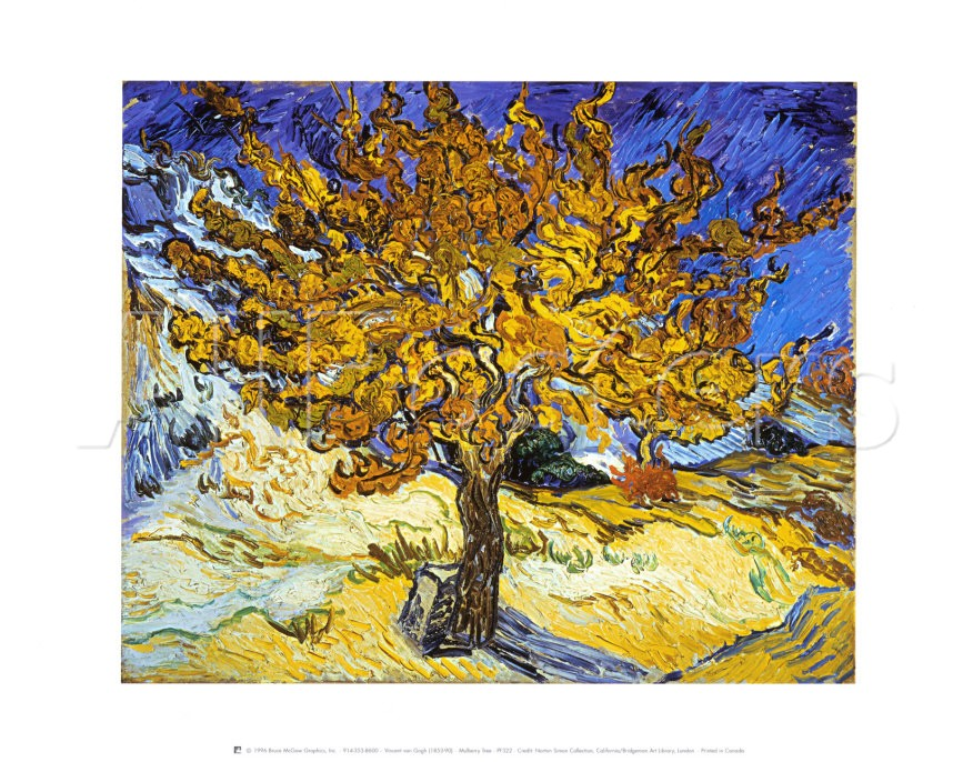 Mulberry Tree - Vincent Van Gogh Paintings