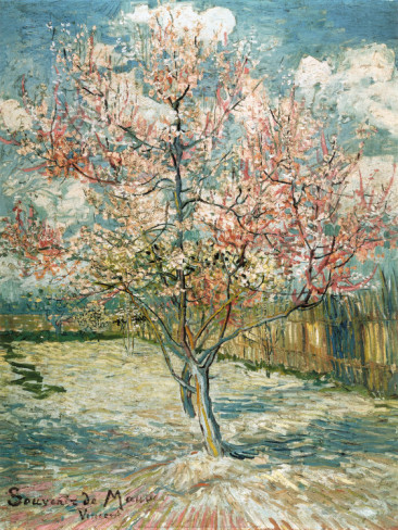 Peach Tree in Bloom at Arles - Vincent Van Gogh Paintings
