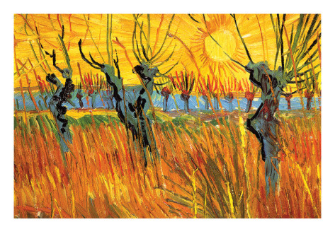 Pollard Willows at Sunset - Vincent Van Gogh Paintings