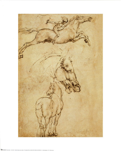 Sketch Of A Horse - Leonardo Da Vinci Painting