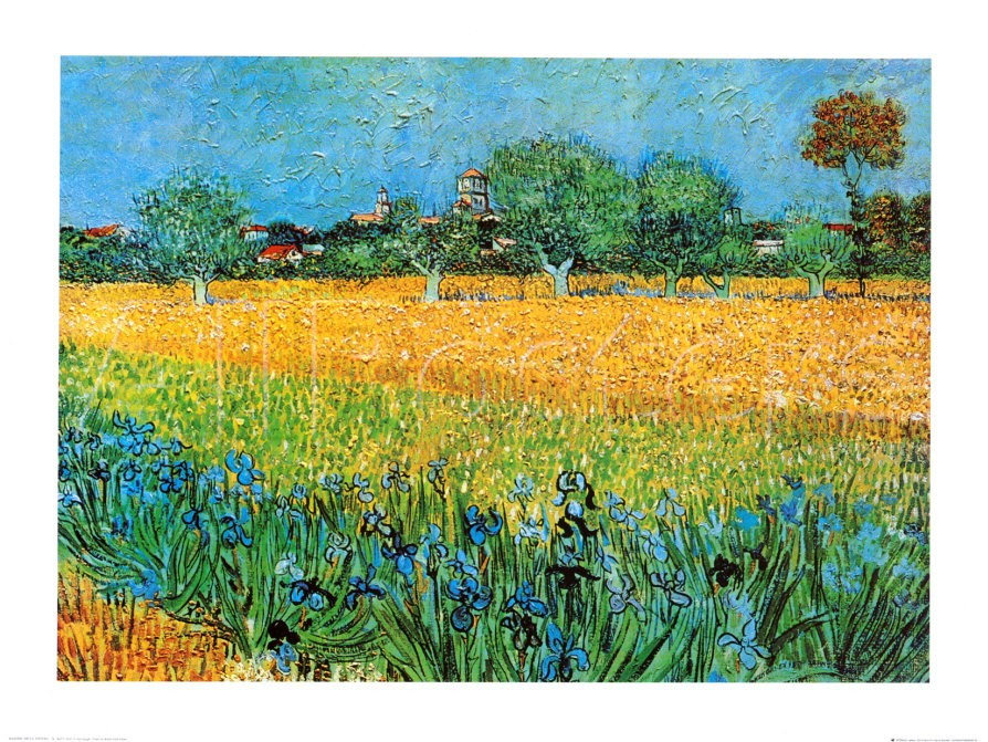 View of Arles with Irises - Vincent Van Gogh Paintings